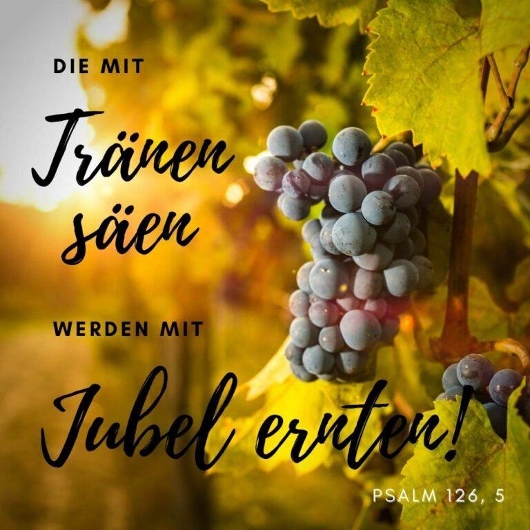Psalm 126, 5