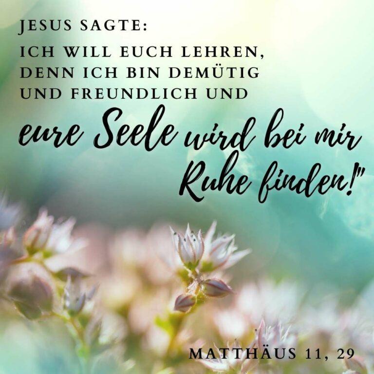 Bibelvers Matthäus 11 ,29