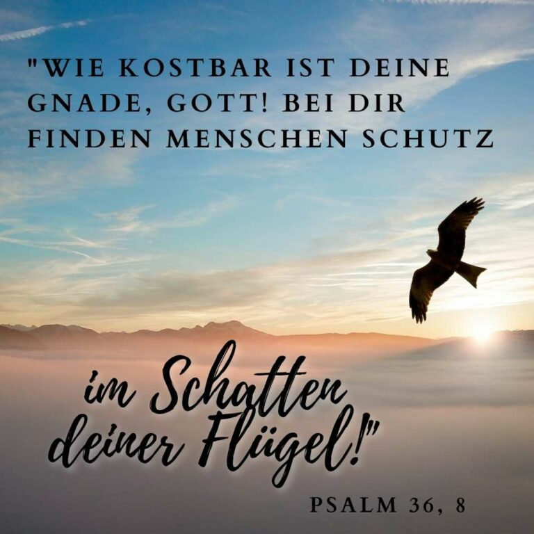 Psalm 36, 8