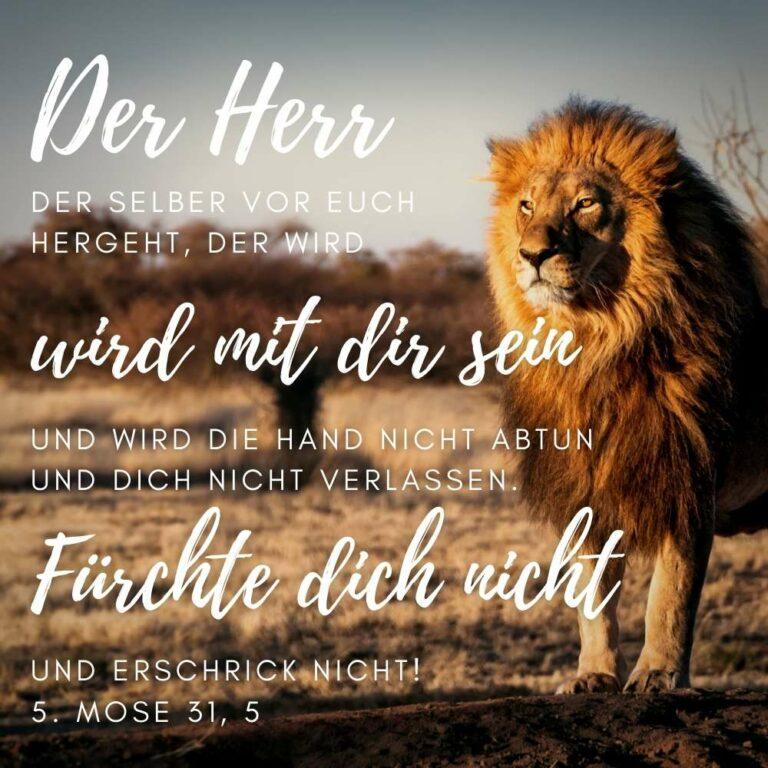Bibelvers 5. Mose 31, 5