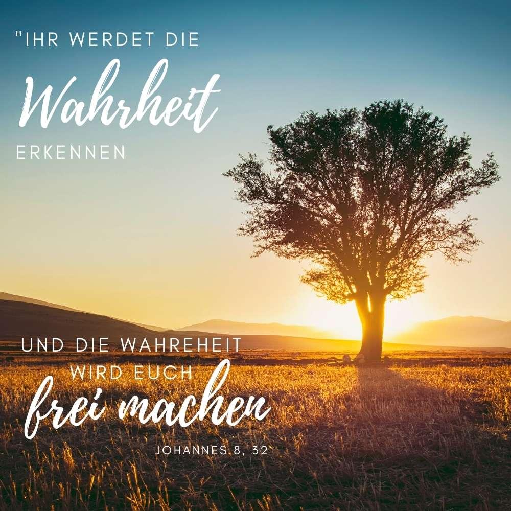 Bibelvers Johannes 8, 32